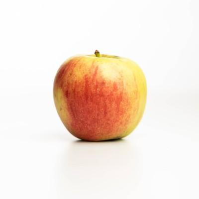 Pomme Elstar des Vergers Tissot