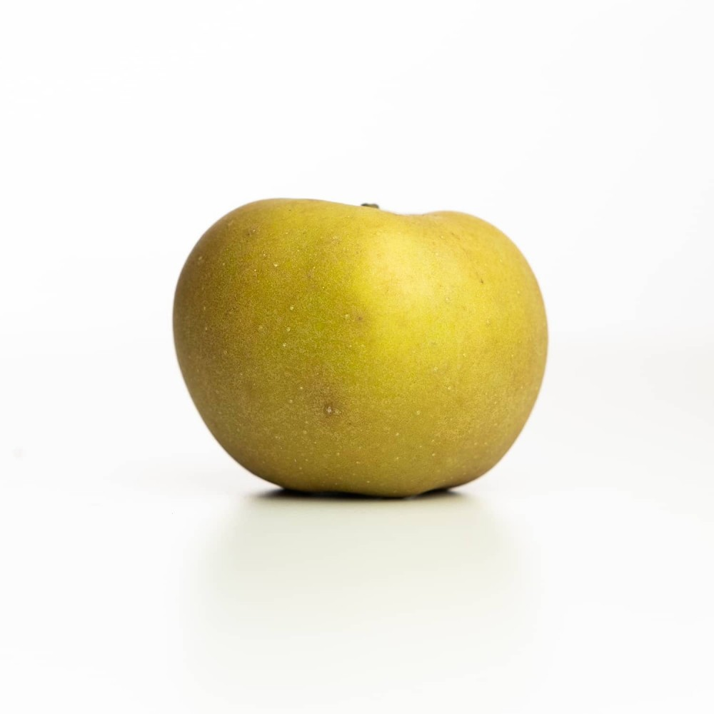 Pomme Reinette grise du Canada, Vergers Tissot