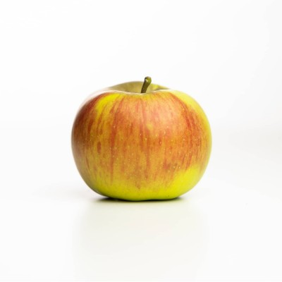Pomme Reine des Reinettes, Vergers Tissot