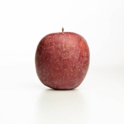 Pomme Fuji des Vergers Tissot