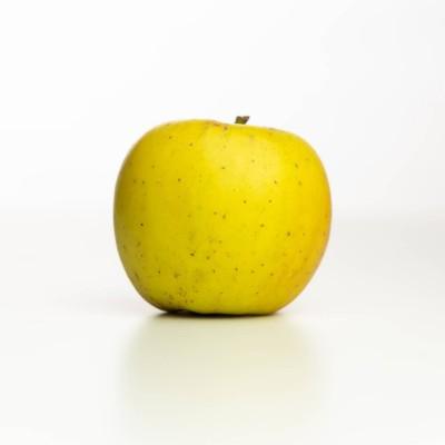 Pomme Opal bio, Vergers Tissot